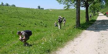 EGZ-Exkursion, Weissenstein (SO), 24.-25.06.2006