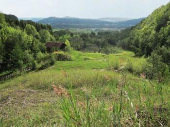 Sonntags-Exkursion in die Tongrube Eriwis bei Schinznach Dorf (AG)