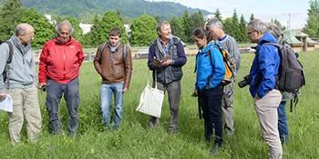 Exkursion auf die Orchideen-Dächer des Seewasserwerkes Moos