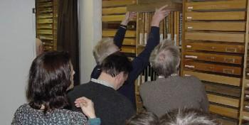 Dipteren-Tagung vom 05.02.2011